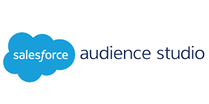 Salesforce Audience Studio